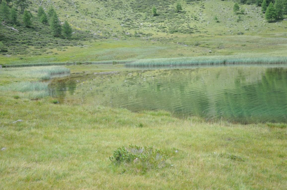 Weissbrunn und Umgebung